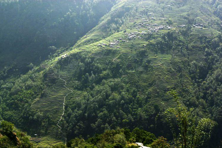 Nepal, van Ghandruk naar Birethanti