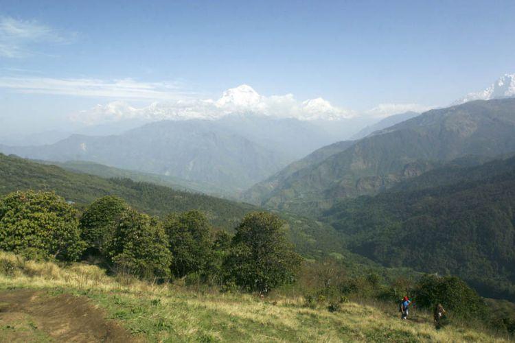 Nepal, Van Ghorepani naar Ghandruk